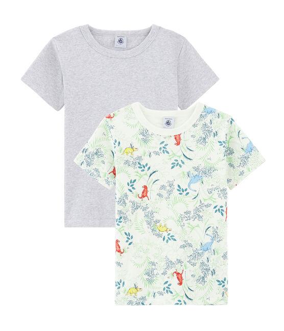 Duo de tee-shirts petit garçon lot .