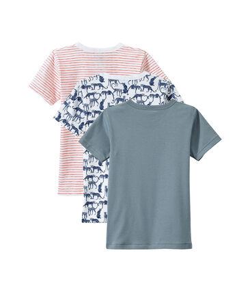 Lot de 3 t-shirts garçon manches courtes