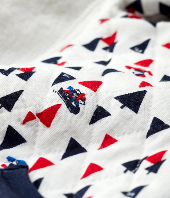 Sweatshirt à capuche bébé garçon blanc Marshmallow / blanc Multico
