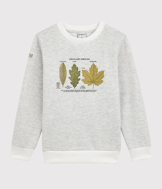 Sweatshirt enfant garçon Petit Bateau x Deyrolle gris Montelimar Chine