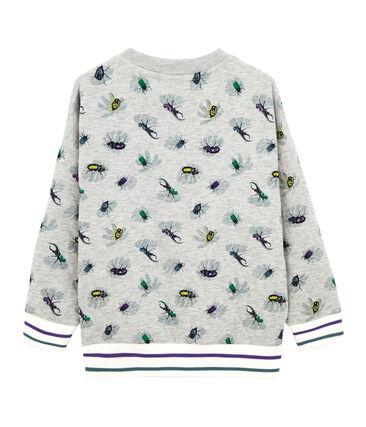 Sweat shirt enfant garçon gris Beluga / blanc Multico
