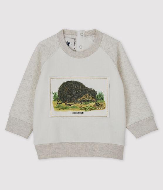 Sweatshirt bébé garçon Petit Bateau x Deyrolle MARSHMALLOW/MONTELIMAR